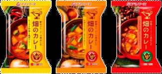 (終)畑のカレー3種いろいろセット
