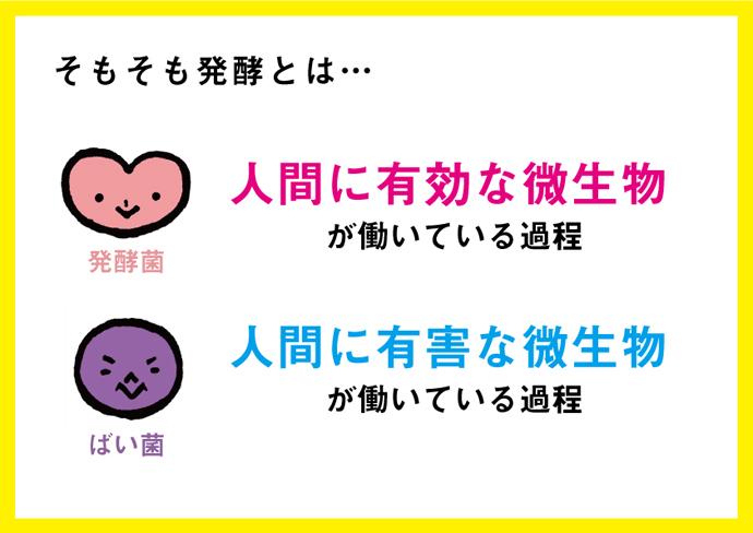 hiraku10_01_01