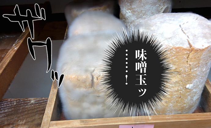 hiraku11_01_03