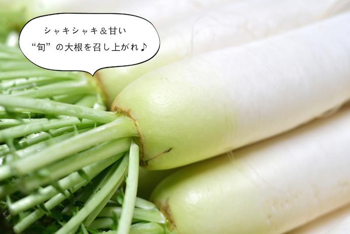 yoshika12_03_01
