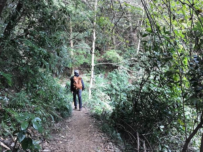 高尾山でのハイキング