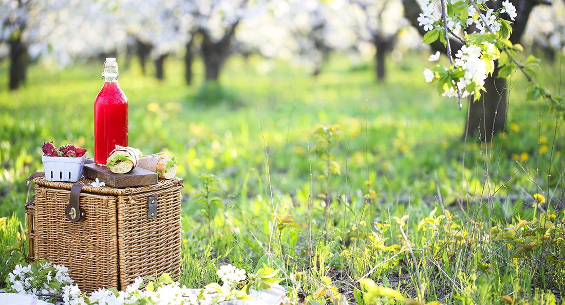 Basket, sandwiches, plaid and juice in a blossoming garden. Vintage tender background. Romance, love, date