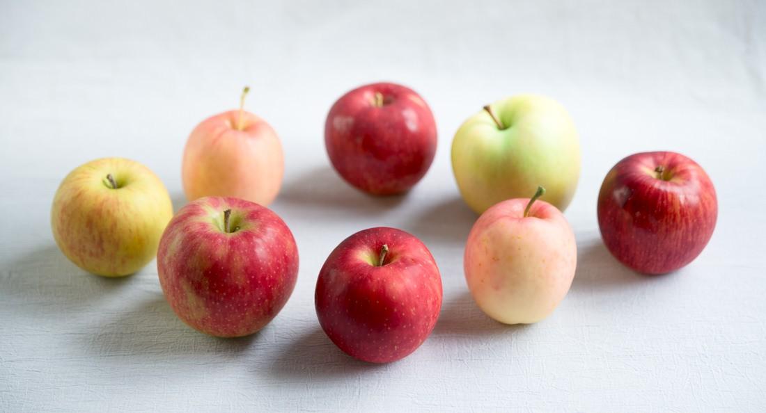 りんごを並べたアイキャッチ