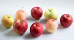 りんごを並べたサムネイル